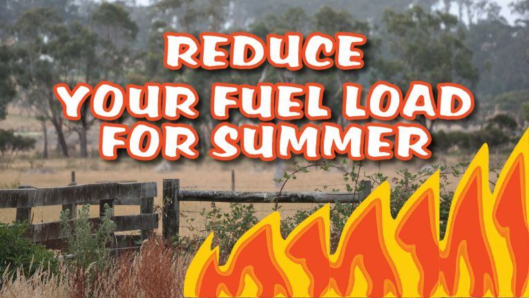 Take Control Now - reduce your fuel load for summer image